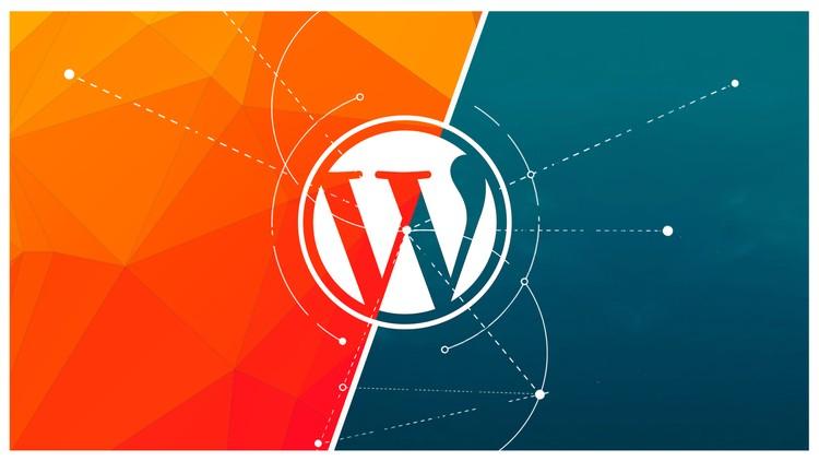 analiza web
